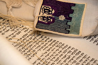 Our new Torah scroll
